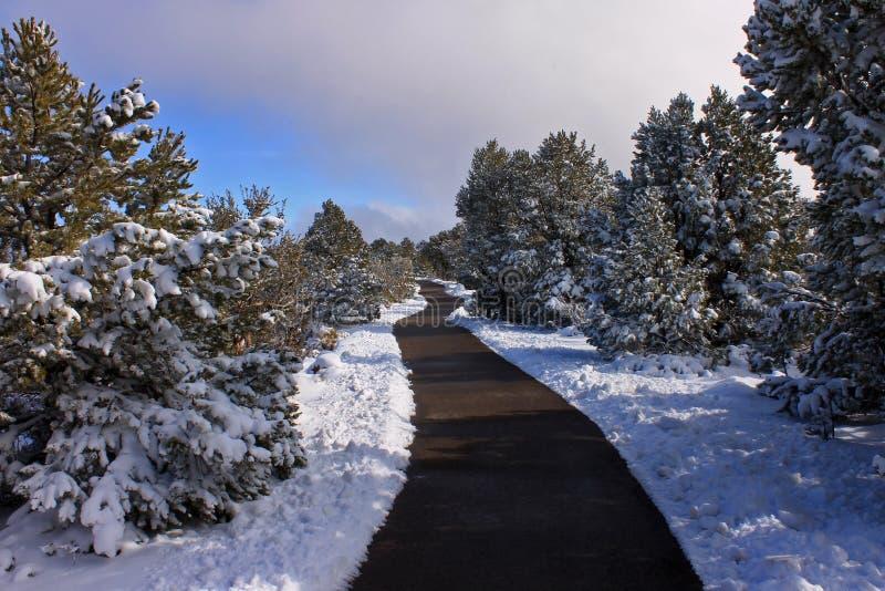 Mather Point Trail stockbild