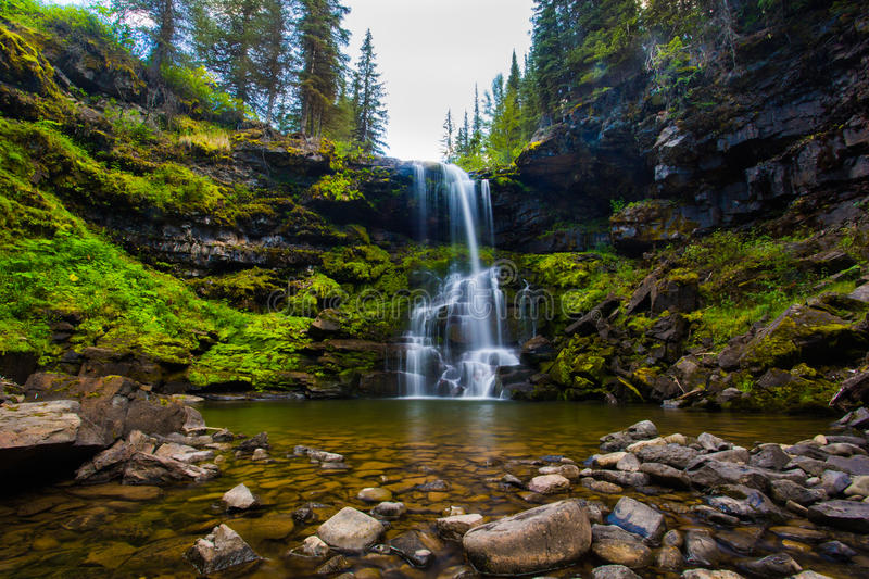 Matherson Falls Waterfall in the sub alpine forest in Fernie British Columbia royalty free stock image