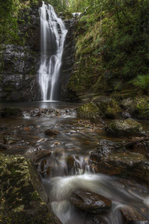 Mathina faller Tasmanien royaltyfria foton
