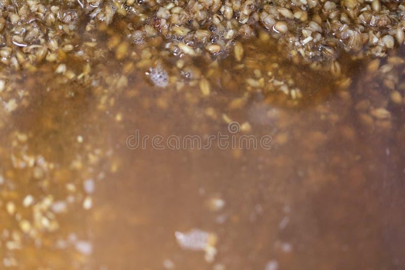 Matières premières de bière et production de bière à la maison photo stock