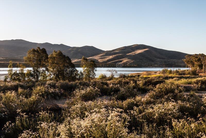 Matin au lac inférieur Otay avec les arbres et la chaîne de montagne image libre de droits
