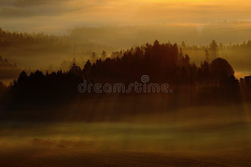 Matin avec le soleil Matin brumeux brumeux froid dans une vallée de chute de parc de Bohème de la Suisse Collines avec le brouill image stock