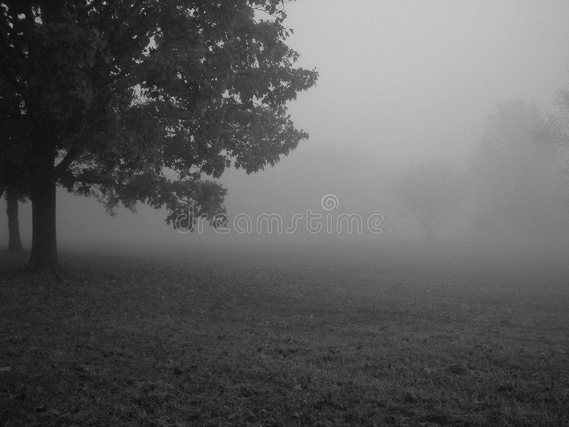Matin Brumeux Images stock