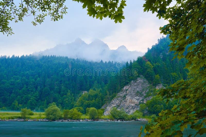 Matin brumeux au-dessus de la gorge de rivière de Dunajec. image libre de droits