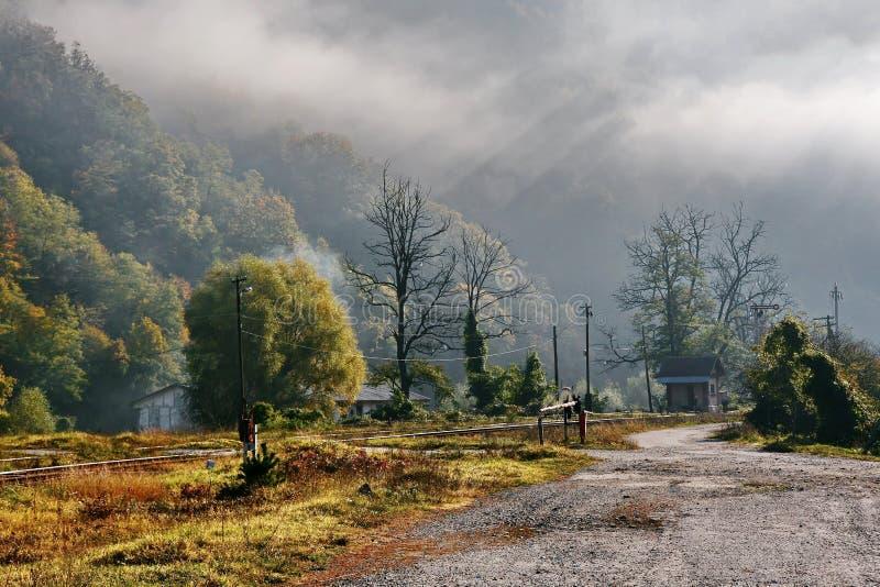 Matin brumeux d'automne photo libre de droits