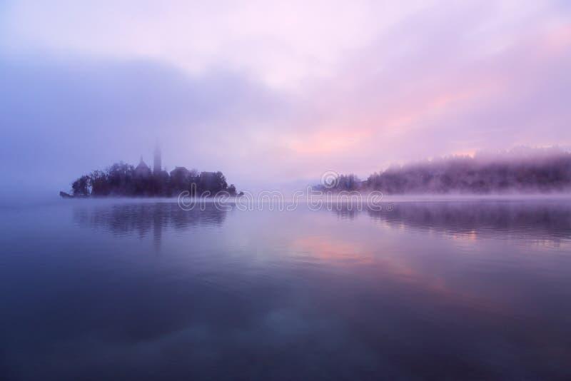 Matin brumeux dans le lac saigné image libre de droits