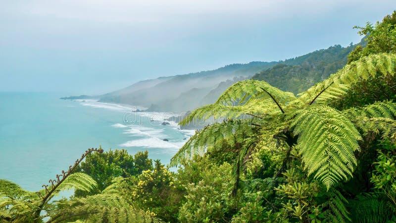 Matin brumeux sur l'île du sud de la Nouvelle Zélande images stock