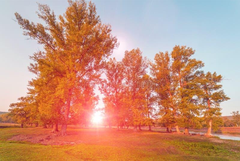 Matin brumeux sur la rivi?re La nature des Monts Oural au lever de soleil sur Autumn Day photo stock