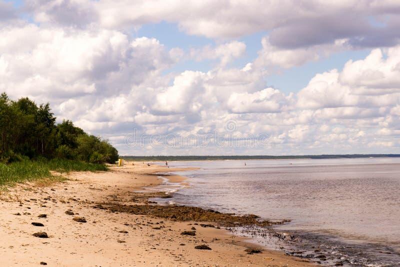 Matin d'été par le bord de la mer photo stock