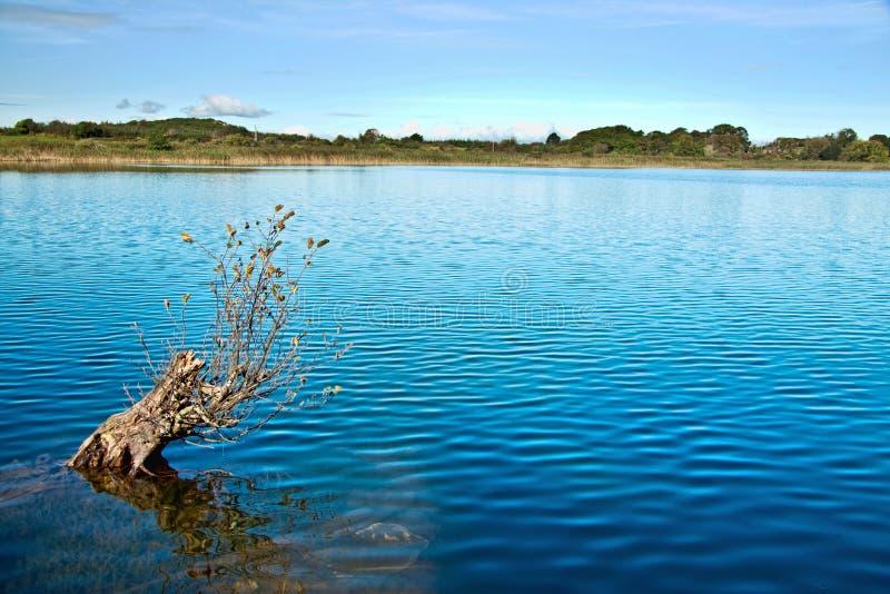 Matin d'automne à un lac irlandais photographie stock