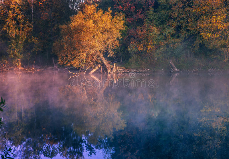 Matin d'automne images stock