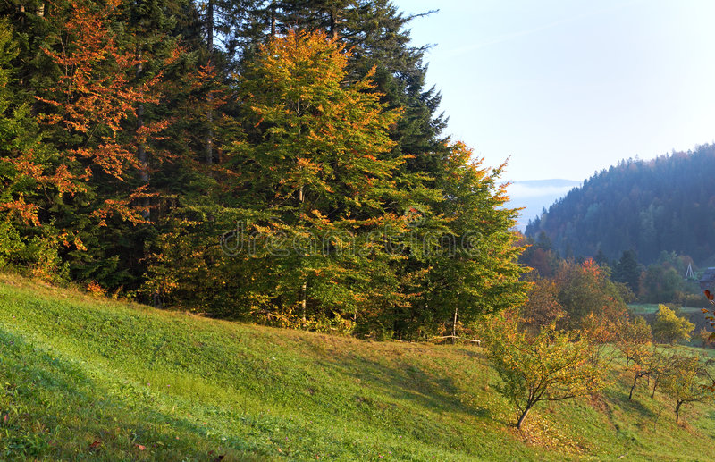 Matin d'automne image stock
