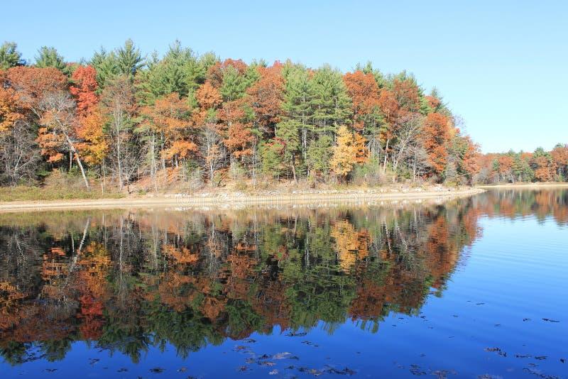 Matin d'automne de novembre chez Walden Pond réflexion images stock