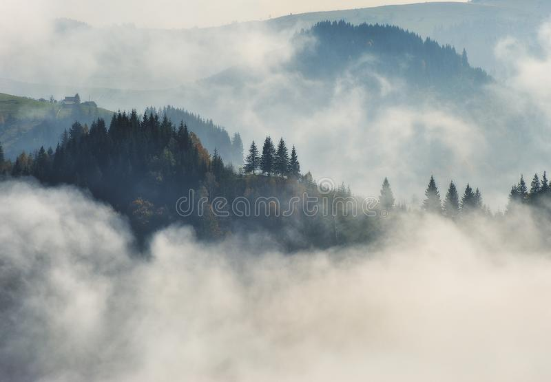 Matin d'automne Lever de soleil brumeux dans les montagnes carpathiennes image stock