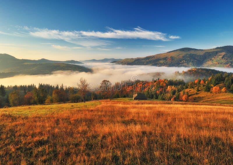 Matin d'automne Lever de soleil brumeux dans les montagnes carpathiennes image libre de droits