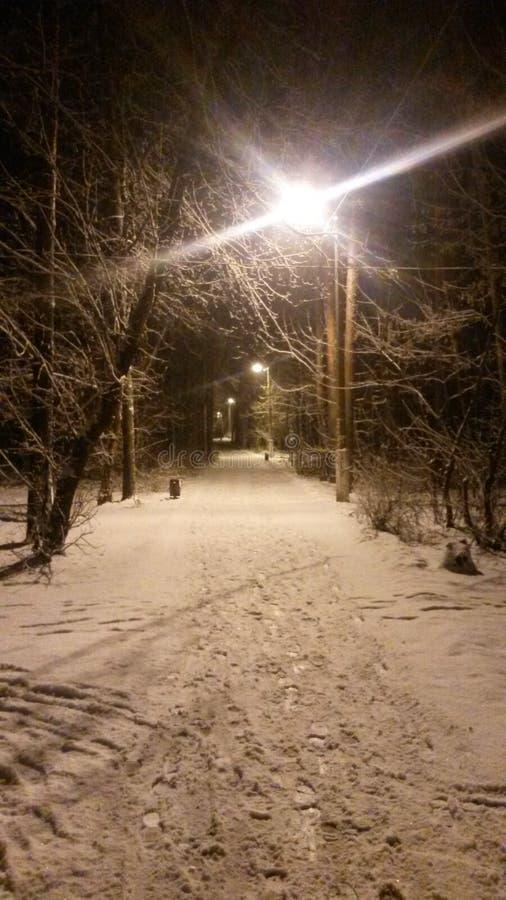 Matin d'hiver à la région de Moscou image libre de droits