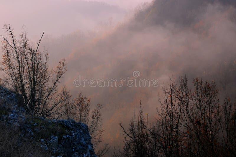 Matin flou dans Stara Planina images stock