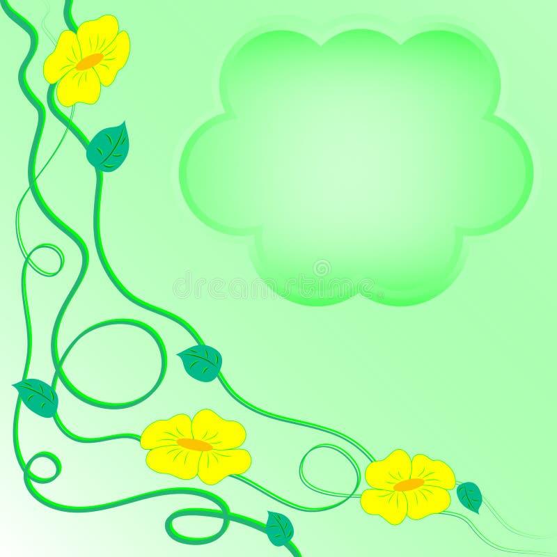 Matin-gloire vert clair image stock