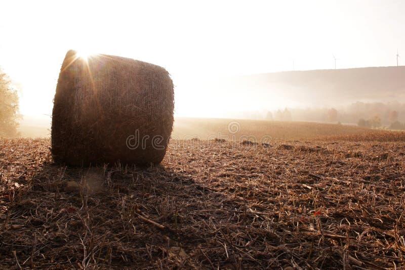 Matin Glory Sunrise Part III photos stock