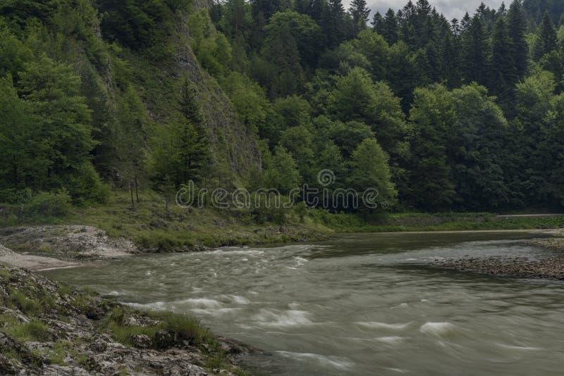 Matin gris-foncé près de confluent de crique de Lesnicky et de rivière de Dunajec photographie stock