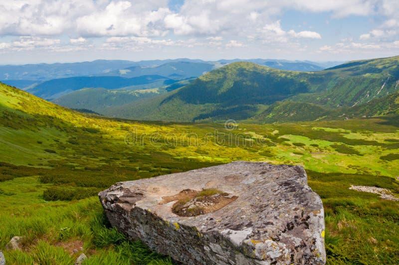 Matin lumineux d'été dans les montagnes carpathiennes photographie stock