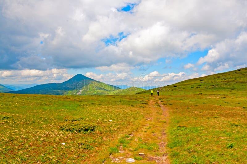 Matin lumineux d'été dans les montagnes carpathiennes photo libre de droits