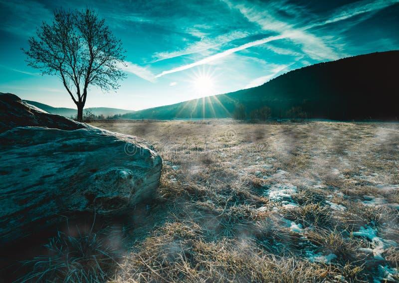 Matin tellement froid, beau, brumeux avec le lever de soleil et nature gelée photos stock