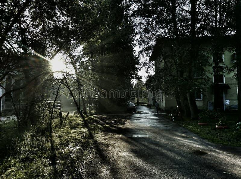 Matin, ville, St Petersburg, greyness photographie stock libre de droits