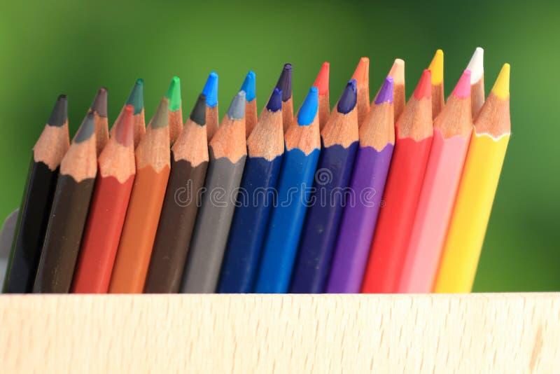 Matite colorate con un canestro di conoscenza sull'erba immagini stock libere da diritti