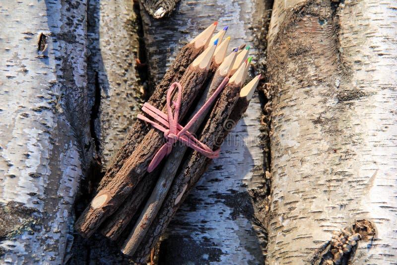 Matite colorate dall'albero di tamarindo avvolto nell'arco di cuoio rosa fotografia stock