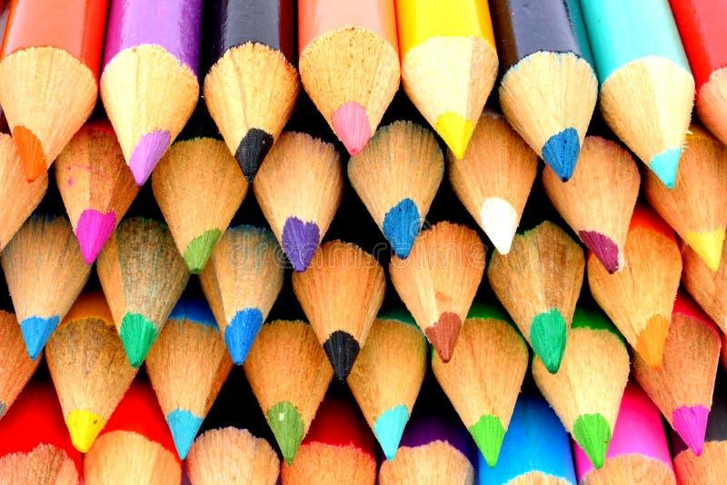 Matite di legno immagine stock immagine di colori fila - Immagine di lucertola a colori ...
