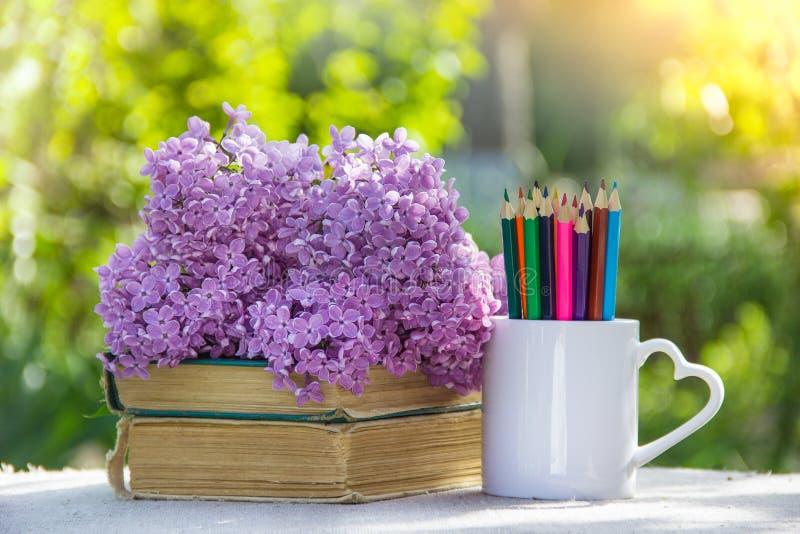 Matite e pila colorate di libri Di nuovo al banco Matite, libri e fiori fotografia stock