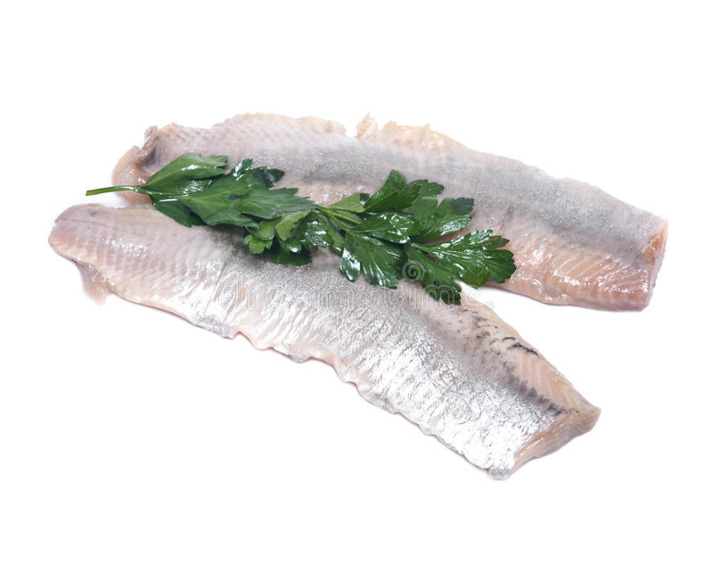 Matjes herring fillets in oil. Matjes herring fillets with parsley isolated on white background royalty free stock photography