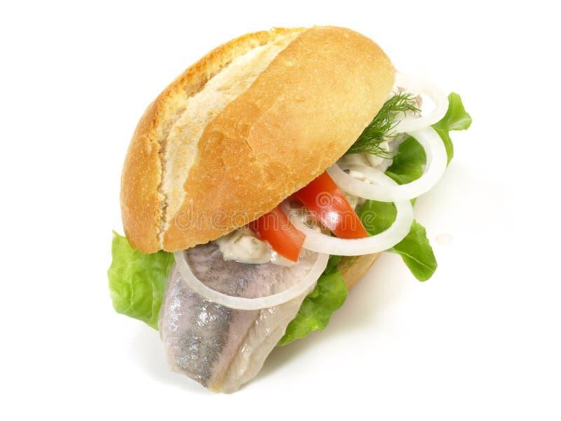 Matjesharingen - Vissenbroodje royalty-vrije stock afbeeldingen