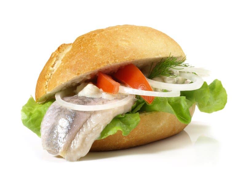 Matjesharingen - Vissenbroodje royalty-vrije stock afbeelding