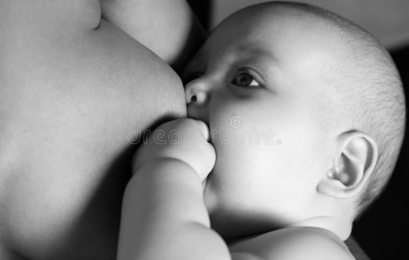 Matka breastfeeding Dziecko wykarmia zdjęcie royalty free