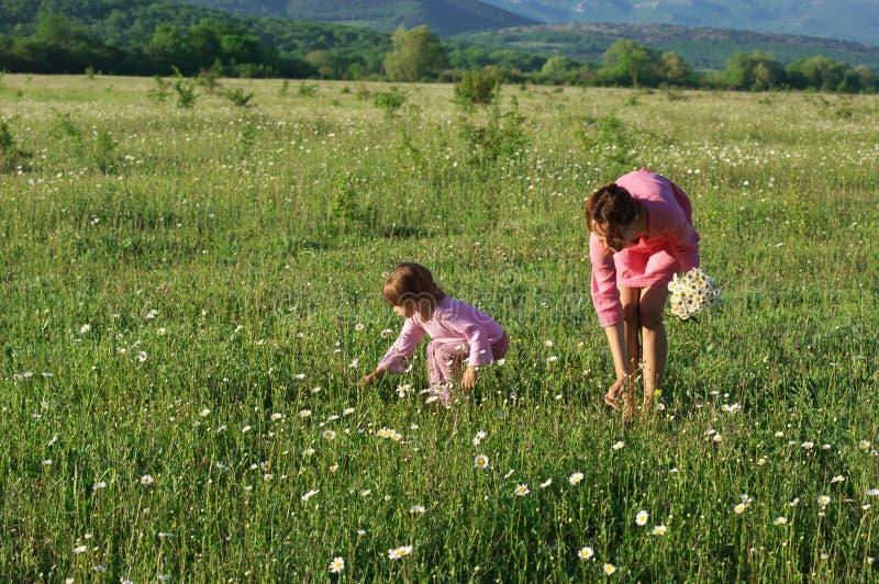 Matka i córka na łące zdjęcia stock