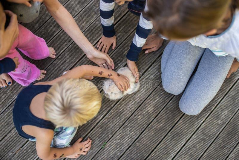 Matka i cztery dzieciaka z małym królikiem zdjęcie stock