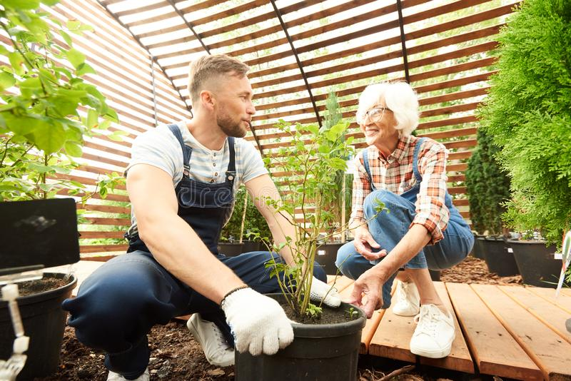 Matka i syn Pracuje w ogródzie obrazy royalty free