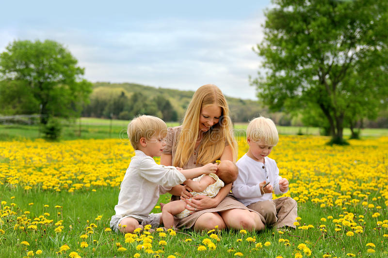Matka i Trzy dziecka Bawić się w kwiat łące fotografia royalty free