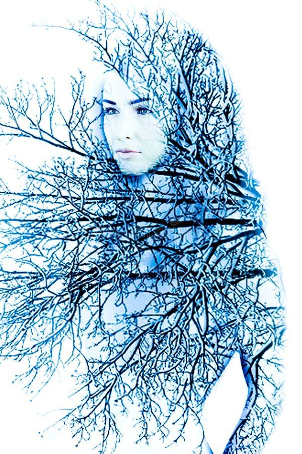 Matka natura w zimie obrazy stock