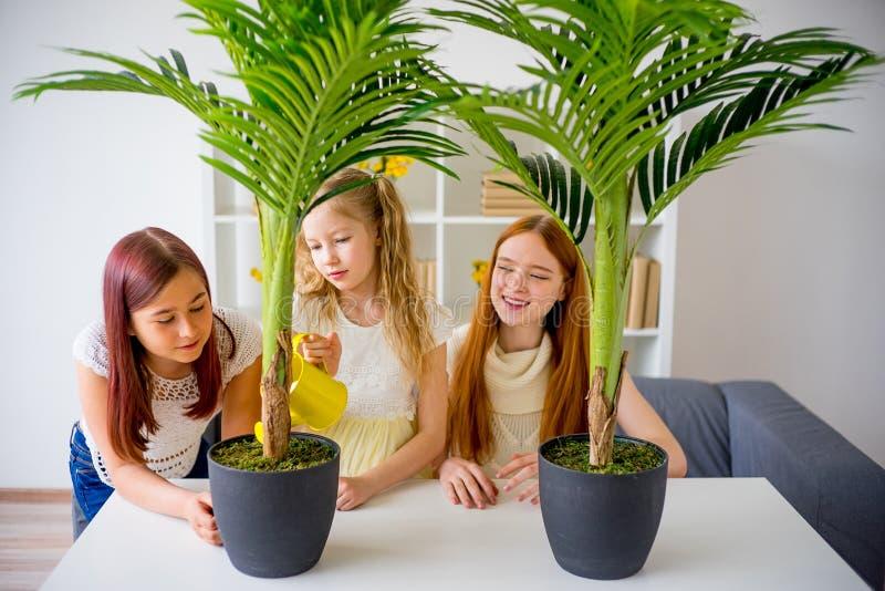Matka nawadnia kwiaty z jej ślicznymi córkami obraz royalty free
