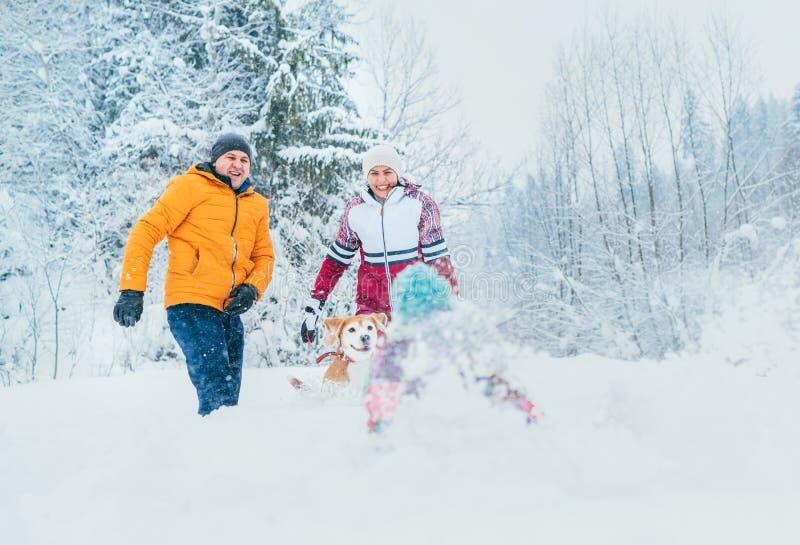 Matkuje rodziny błaź się w śnieżnym lesie rzucać ich małego daugher snowdrift i ojcuje obraz royalty free