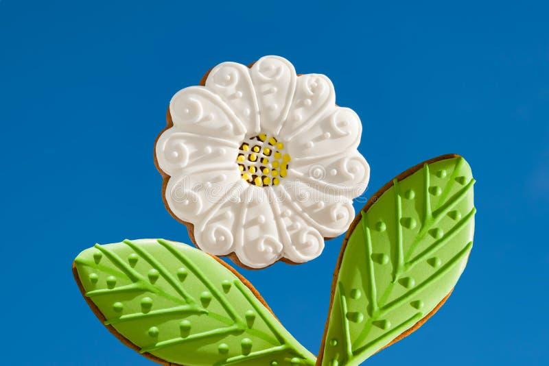 Matmodell, pepparkaka med vit och grön glasyr i form av blomman och bladet, fotografering för bildbyråer