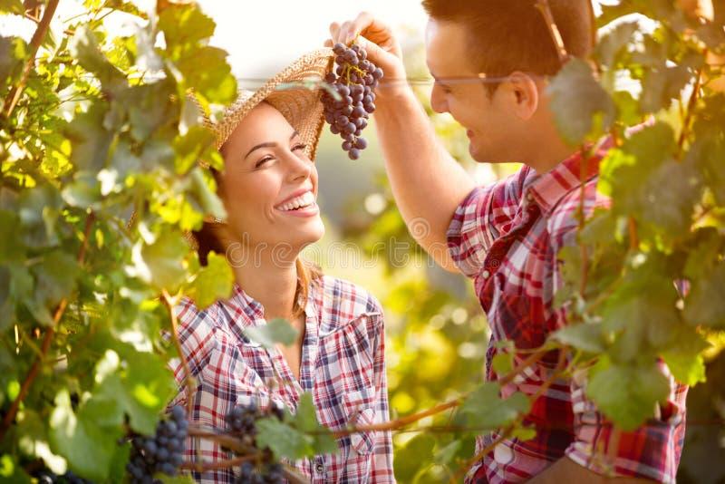 Matning för ung man hans flicka med druvor royaltyfria foton