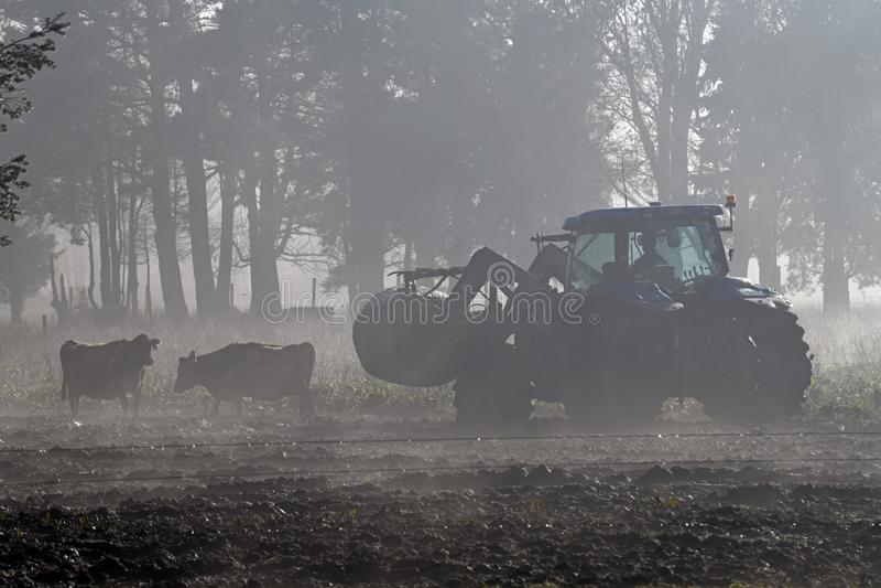 Matning ut i dimman fotografering för bildbyråer