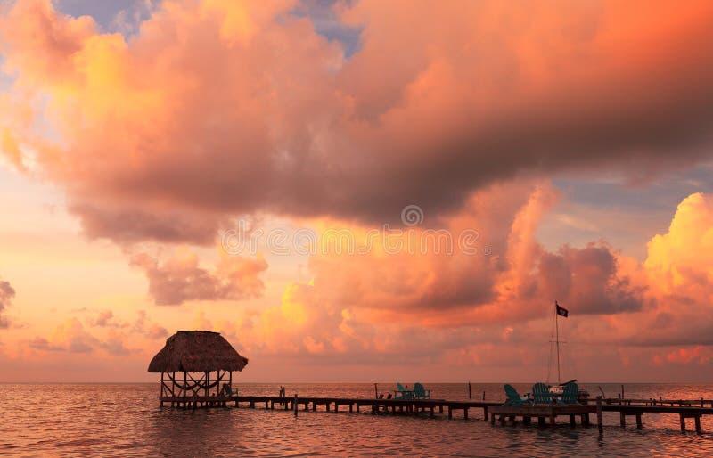 Matoir Belize de Caye images libres de droits