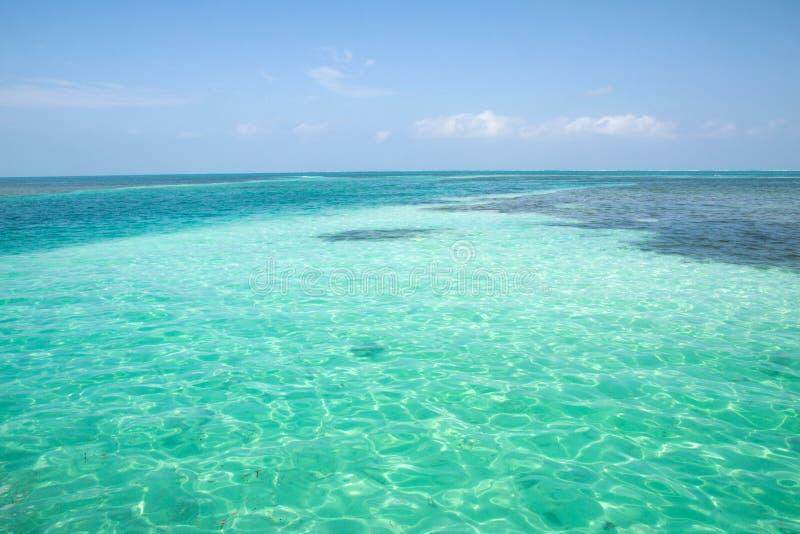 Matoir de Caye, Belize photos stock