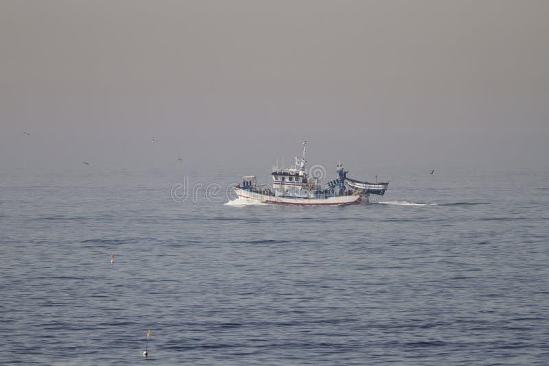 Matosinhos, Portogallo - 29 settembre 2015: Sardina portoghese di Taditional che pesca navigazione di legno della sciabica verso  fotografia stock libera da diritti
