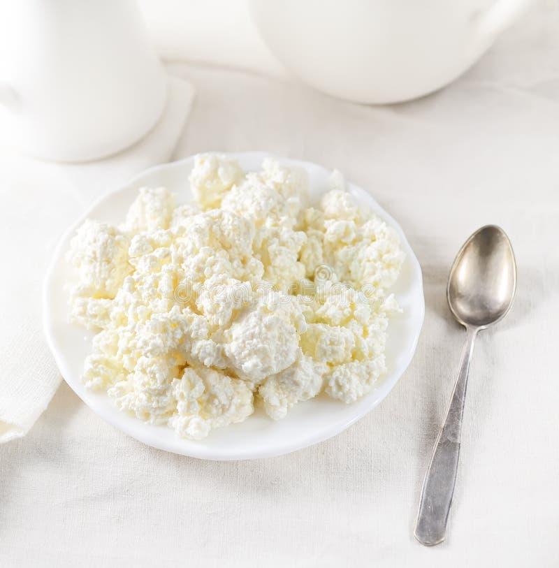 Maträtt av keso, en tesked på en vit bakgrund royaltyfri foto